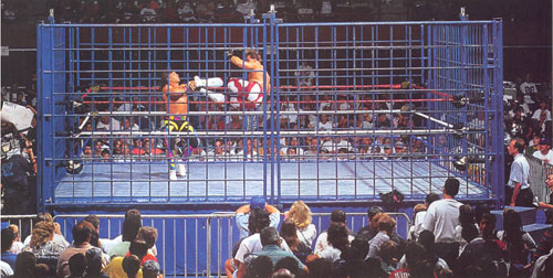 The Steel-Cage, No-Holds-Barred, Cable-Ratings Death Match