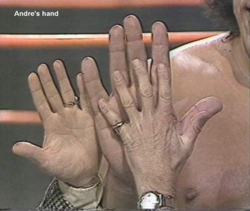 Image result for andre the giant hand