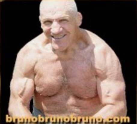 http://www.onlineworldofwrestling.com/pictures/b/brunosammartino/40.jpg